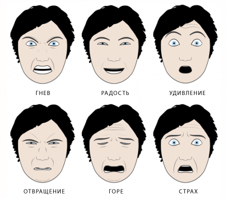 the universal expressions of emotion essay Buy universal emotions essay paper online introduction emotion refers to a natural state of mind determined by a person's mood, circumstances, or several research studies have concluded that the above mentioned emotions are universal for instance, in the book, the expression of the.